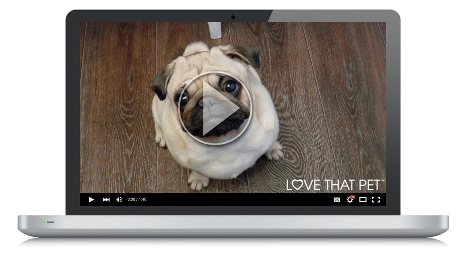 Mac Screenshot with dog